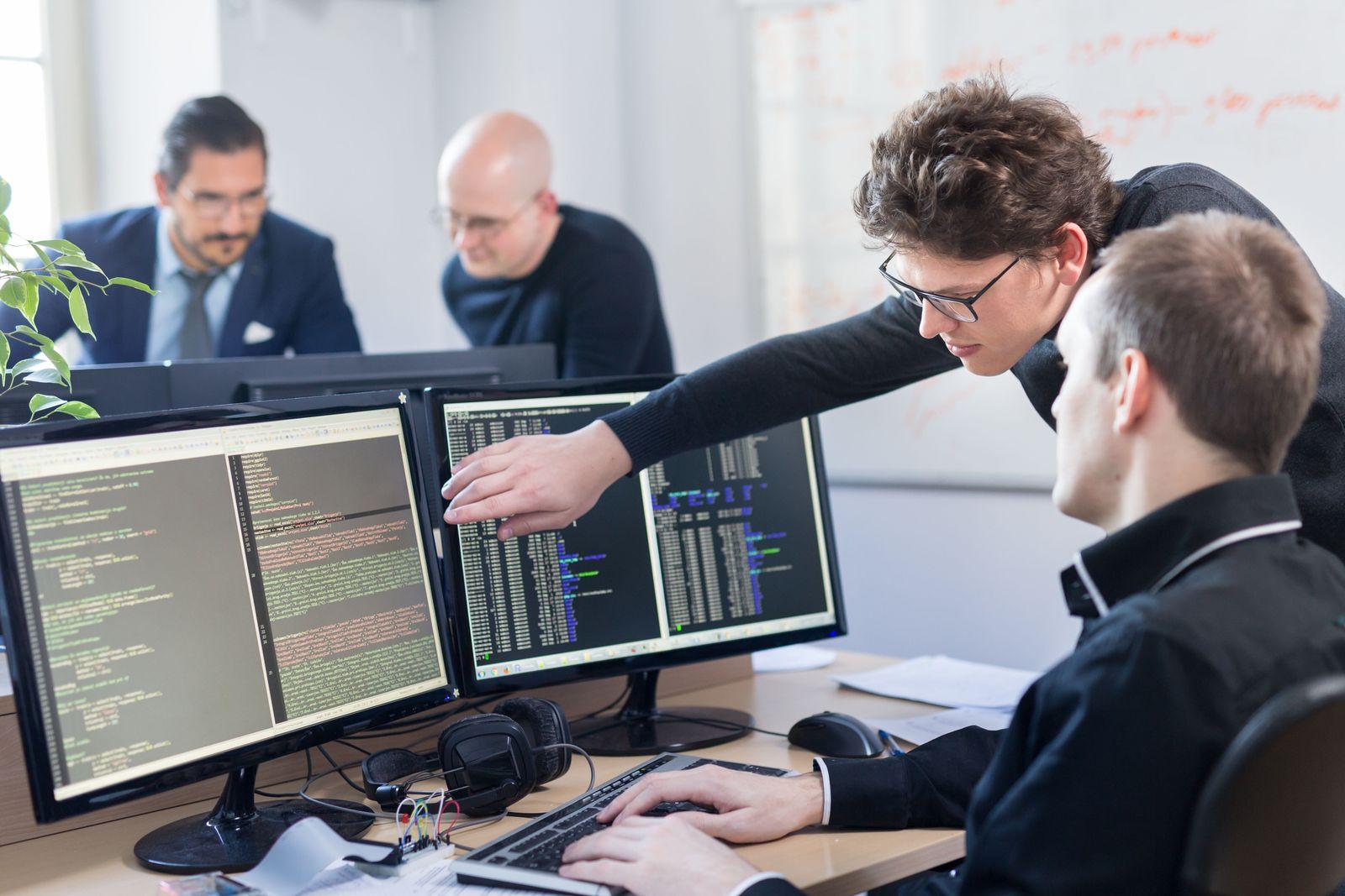 software audit